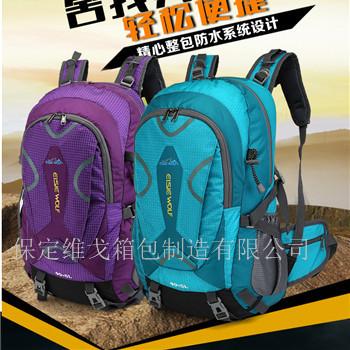 雙肩包旅行戶外運動包男女 旅行戶外背包潮  河北定做箱包加印LOGO