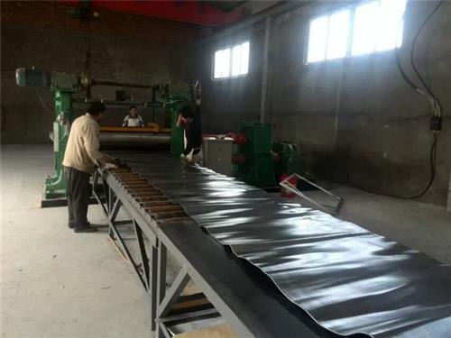 山东宏兴防护(在线咨询),焦作铅门,铅门厂