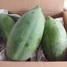 供應 云南紅心木瓜5斤新鮮水果冰糖心