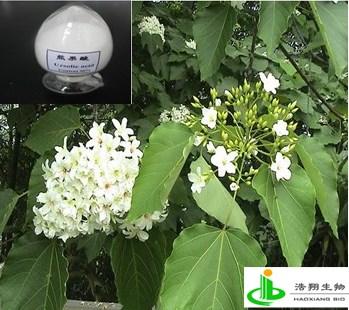 熊果酸(枇杷叶 泡桐树叶提取物)